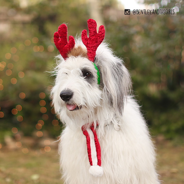 Holiday Antler Headband (2 Sizes) Image Preview 2