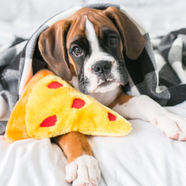Squeakie Emojiz™ - Pizza Slice Image Preview 1