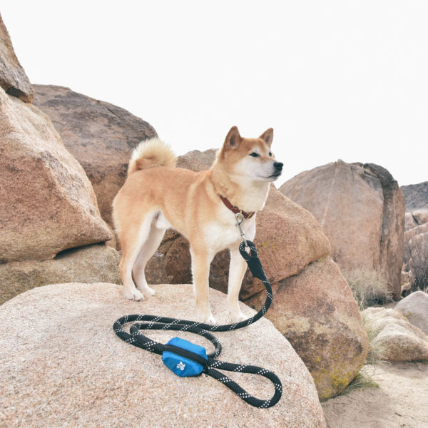 Adventure Leash Bag Image Preview 1