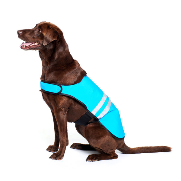 Cooling Vest - Blue Image Preview 2
