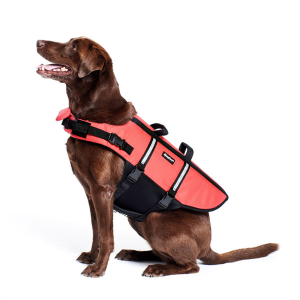 Adventure Life Jacket - Red Image Preview 1