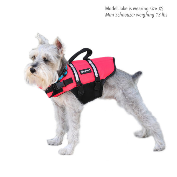 Adventure Life Jacket - Red Image Preview 5