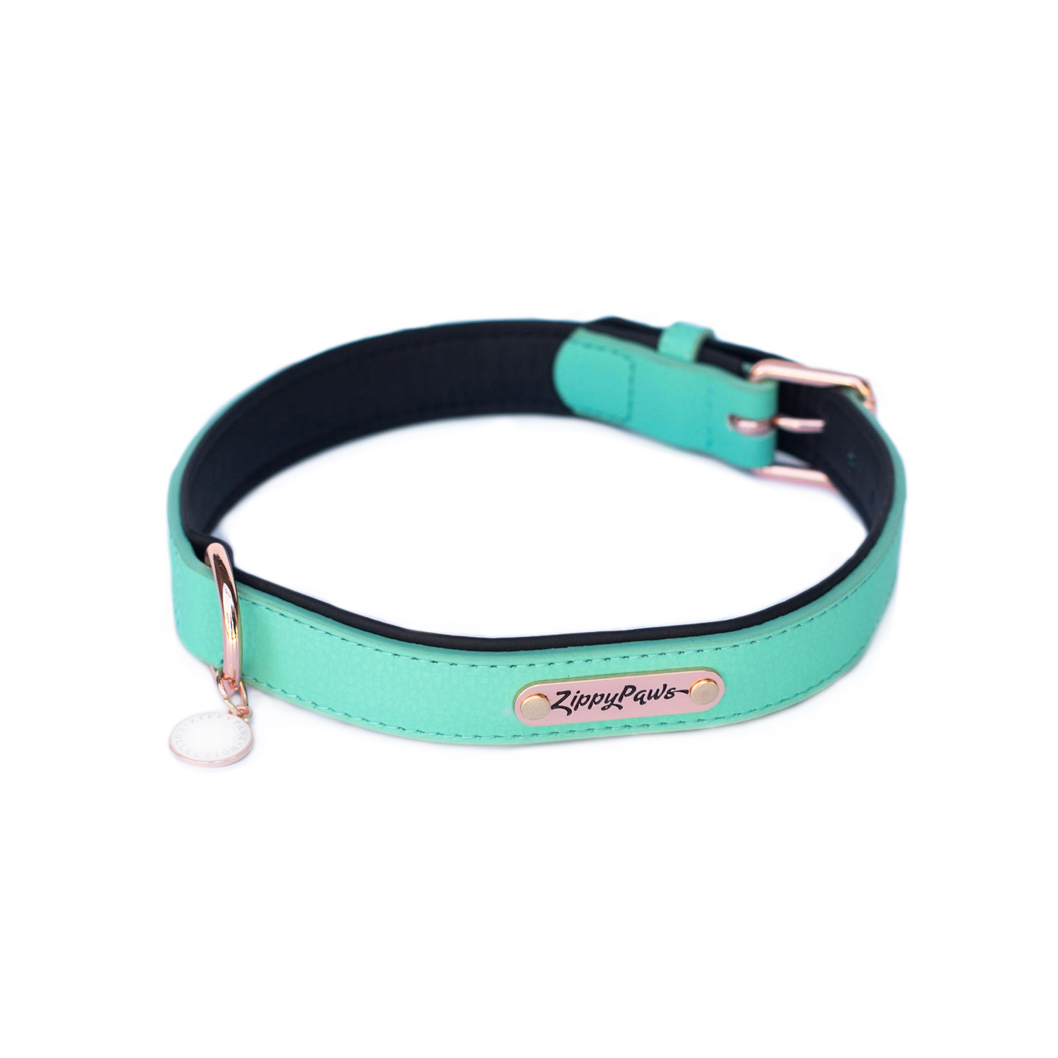 Vivid Collection Collar - Teal-0