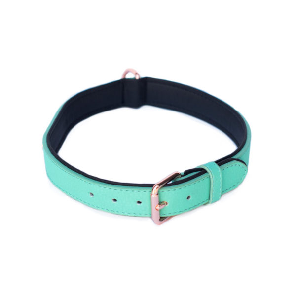 Vivid Collection Collar - Teal Image Preview 3