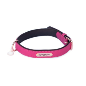Vivid Collection Collar - Magenta-0
