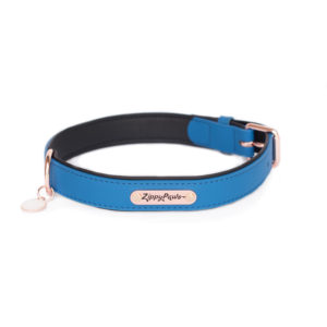 Vivid Collection Collar - Cobalt-0