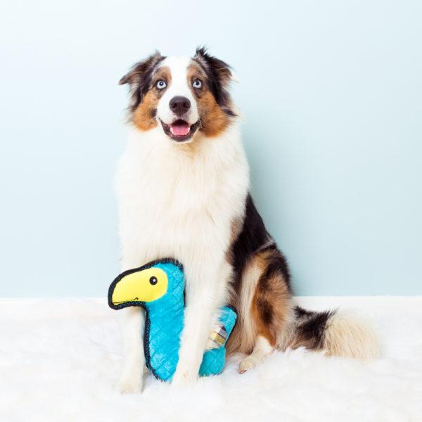 Z-Stitch® Grunterz - Dodo The Dodo Bird Image Preview 1