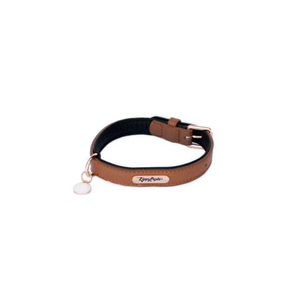 Legacy Collection Collar - Brown Image Preview 8