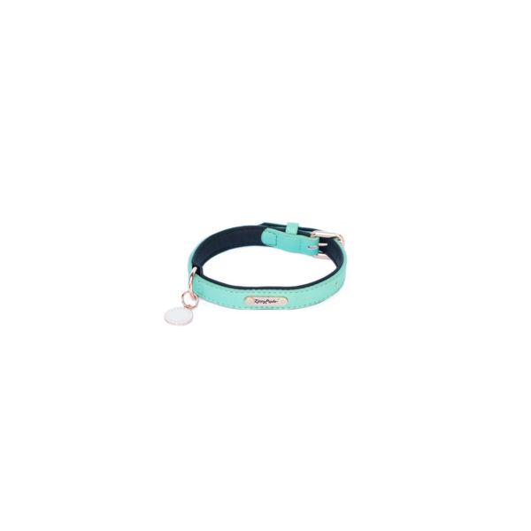 Vivid Collection Collar - Teal Image Preview 7