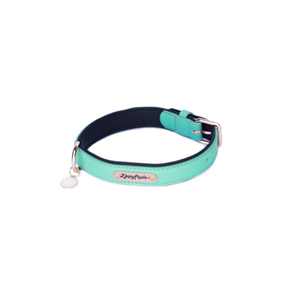 Vivid Collection Collar - Teal Image Preview 9