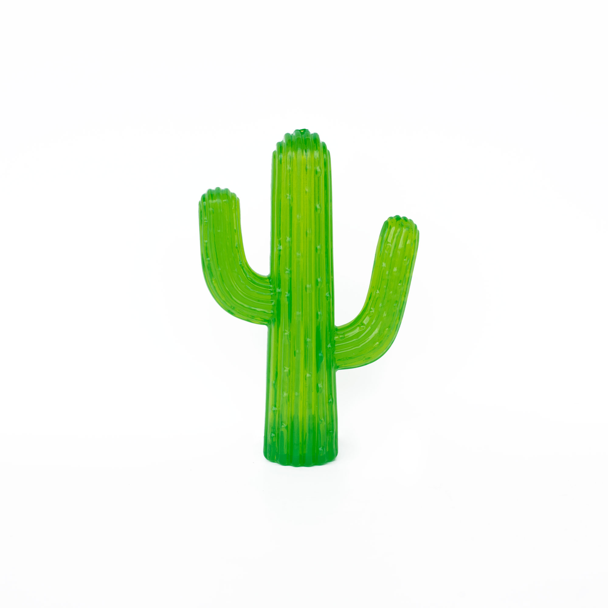 TPR Thermoplastic rubber cactus squeak toy