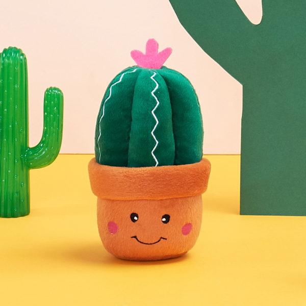 Carmen The Cactus Image Preview 3