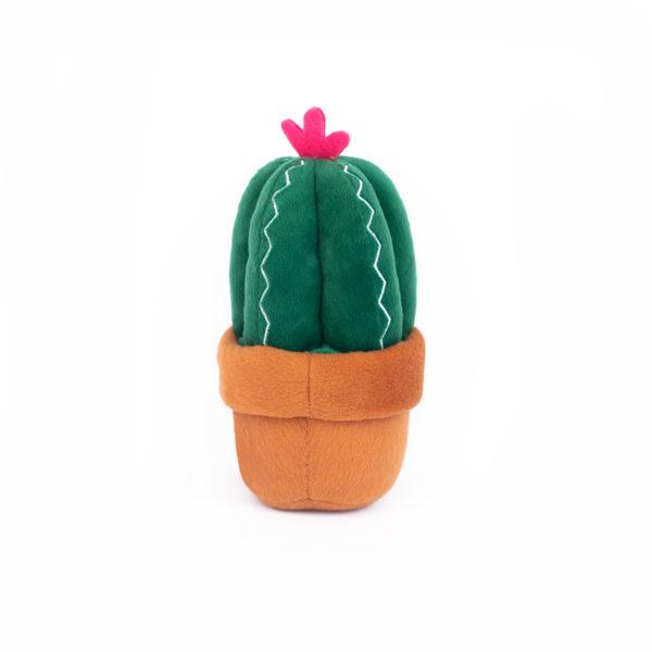 Carmen The Cactus Image Preview 5